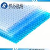 El panel plástico de la depresión del policarbonato de la calidad con la aprobación del SGS
