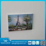 Publicité Promotion Cadeau Rubber Tin Plate Souvenir Fridge Magnets