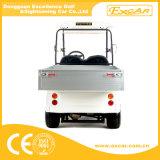 Carro eléctrico del cargamento del uno mismo de 2 Seater para la venta