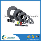 Magneet van het Ferriet van de Ring van de Spreker van de Zeldzame aarde van de Grootte van de douane de Permanente