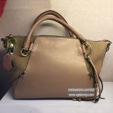 Saco novo de senhora de sacos compra do plutônio da alta qualidade do saco de ombro da forma da bolsa do estilo da fábrica Emg5249 de China