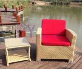 Mobília ao ar livre 698 do Rattan do PE do lazer do hotel do jardim da forma moderna