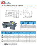 Horizontales hohes Verhältnis-Feuergebührentyp 3-phasiger (Bremse) Motor mit Aluminium- oder Stahlplatte