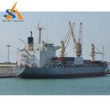 buque de carga del carguero de graneles 6000dwt