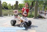 Электрическая мощность мотоциклов китайского четырехколесный мотоцикл
