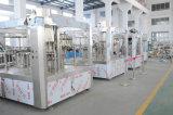 Terminar a estação de tratamento de água mineral bebendo automática Kenya do preço de fábrica completamente
