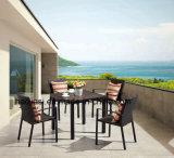 Aluminium extérieur/de jardin/patio rotin et Tableau HS7108dt-2 de Polywood