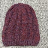 レディース秋の冬暖かい編まれたケーブルのツイスト帽子の帽子の編みこみの帽子(HW117)
