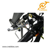 New Products Face One Wheel 36V 350W Electric Handcycle