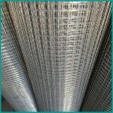 Ячеистая сеть низкой цены гальванизированная и PVC покрынная сваренная от фабрики