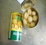 全熱い販売の新しい穀物の優れた品質によって缶詰にされるきのこ