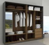 Wardrobe à moda do frame de madeira para a sala de visitas