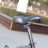 الصين رخيصة سمين إطار العجلة ثلج شاطئ درّاجة كهربائيّة [500و]