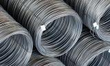 8mm, laminado en caliente de la bobina de alambre de acero de bajo carbono