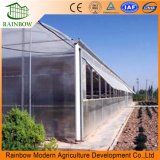 Le toit exhale le système de ventilation pour la serre chaude de plastique d'agriculture