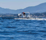 Liya 5.8mの贅沢なガラス繊維の肋骨のボートFRPの漁船
