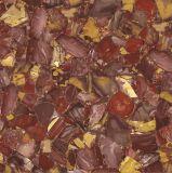 Het Rode Marmer van uitstekende kwaliteit kijkt de Verglaasde het Vloeren Tegel 60X60 van het Porselein voor Binnenland