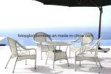 La Tabella pranzante e le presidenze di vendita calda del rattan del PE hanno impostato la mobilia esterna