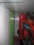 2*150kw Containerized Biogas Generator/CHP
