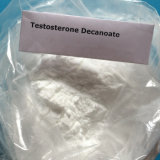 Gesundes Muskel-Wachstum-Steroid Puder-Testosteron Deca Decanoate
