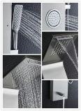 多機能のステンレス鋼のヨーロッパの壁に取り付けられたシャワーのパネルのシャワーセット