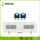 Volles Spektrum-Hydroponik-Gewächshaus 400With600With1000W LED wachsen für Innenpflanzen hell