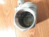 En acier inoxydable de filetage du clapet antiretour de pivotement (200psi)