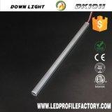 Ímã de LED de luz linear para o dispositivo de varejo