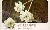 Flor natural de madera de Sola del difusor de lámina hecho a mano de la venta directa de la fábrica
