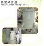 Fornace elettrica di vuoto del gruppo di Schang-Hai