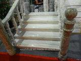 Opérations en pierre précoupées d'escaliers de granit et escaliers de marbre personnalisés par canalisations verticales
