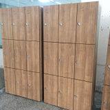 高密度防水固体木の穀物カラーコンパクトHPL主ロックのロッカー