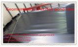 HDPE Geomembrane utilizzato nell'impresa di piscicolture