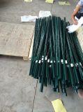 U (зеленый стали с покрытием из полимера)