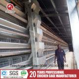 Explorações agrícolas das galinhas poedeiras de gaiolas de bateria com sistema automático