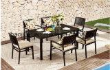 /Rattan al aire libre/silla y vector de los muebles de Polywood de los muebles de /Hotel del jardín/del patio fijados (HS 3001C y HS 3001AC y HS 7110DT)