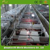 Strumentazione di figliata del maiale della cassa del maiale dell'azienda agricola di maiale