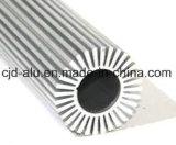 A6063 de Geanodiseerde Uitdrijving van het Aluminium voor Heatsink