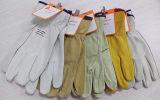 De Handschoen van de Bestuurder van het Geitevel van Ddsafety 2017 zonder Elastische Rug van de Duim van de Voering de Rechte