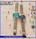 L'ODM Mesdames occasionnels de mode en acier inoxydable montre-bracelet (WY-P17005B)