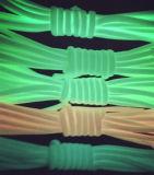 고품질 천막 모험 패킹 견장을 달기를 위한 빛을내는 4mm 폴리프로필렌 밧줄