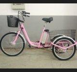 triciclo elettrico di Trike del carico di mobilità della Cina della grande rotella di 36V 250W per gli handicappati