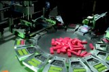 Machine d'imprimante d'écran d'allumeur d'approvisionnement d'usine