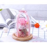 La cubierta de cristal secada flor duradera natural al por mayor preservó rosas