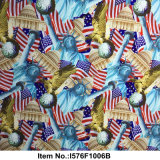 Noi pellicola idrografica no. I576f1006b di disegno della bandierina della statua di libertà