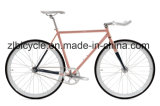 Zl 시는 단 하나 속도 Fixie 기어 자전거를 주문을 받아서 만든다