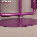 Estante de visualización púrpura de los productos de la decoración del animal doméstico de la promoción del metal caliente del diseño