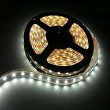 50m/Rollo DC24V5050 SMD LED flexibles impermeables tira con sueño Color