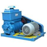 2X Rotary Vane Vacuum pump