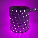 A Todo Color Digital programable TIRA DE LEDS con CC12V/24V2835 SMD